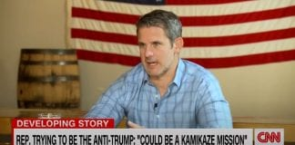 'Could be a kamikaze mission': GOP lawmaker takes on Trump