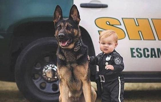 13 Pics That Prove German Shepherds Are The Best Babysitters In The World