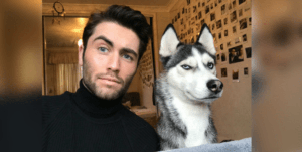 Top 8 Pictures Of Dogs Copying Their Owners