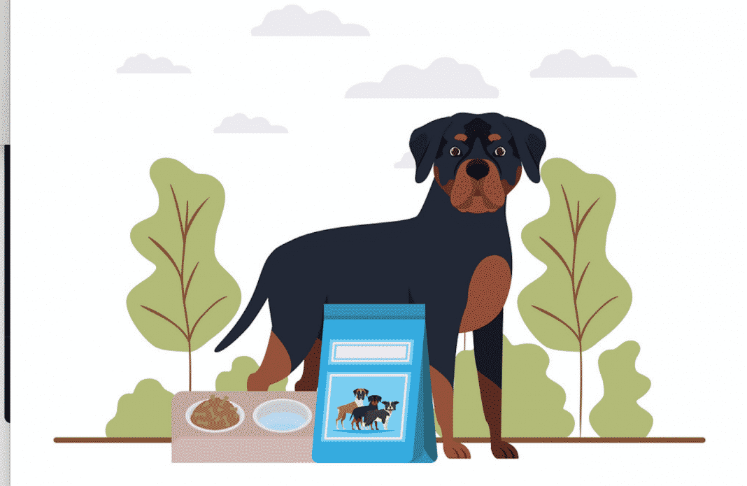 train your Rottweiler to talk