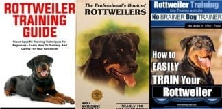 Books about Rottweilers