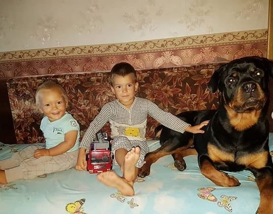 rottweiler with kids
