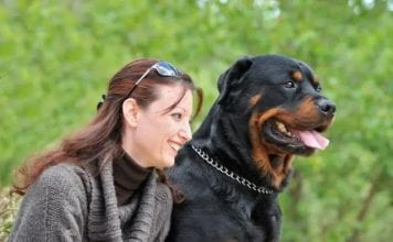Insuring Your Rottweiler